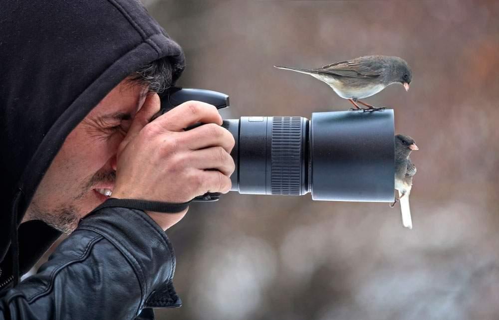fotógrafo de aves en plena acción
